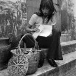 The Birkin basket